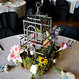 Birdcage with moss and flowers