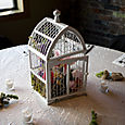Birdcage Filled with Flowers