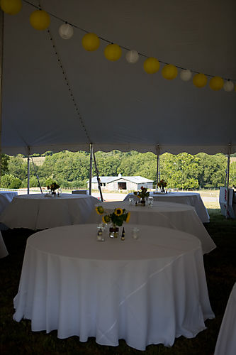 Hanging paper lanterns with table decor (1 of 1)