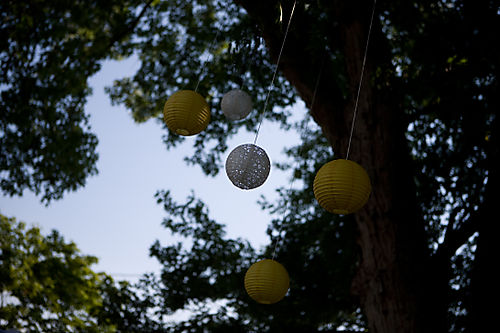 Hanging lanterns in the tree (1 of 1)