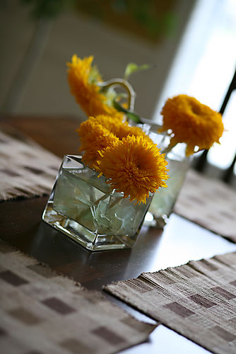 sunflower and square vase