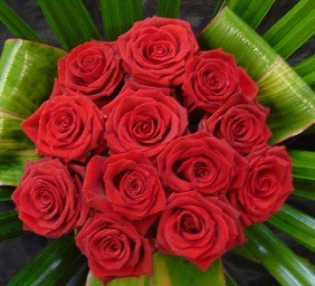 Red roses and tileaves