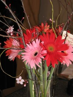 gerbera in red and pink