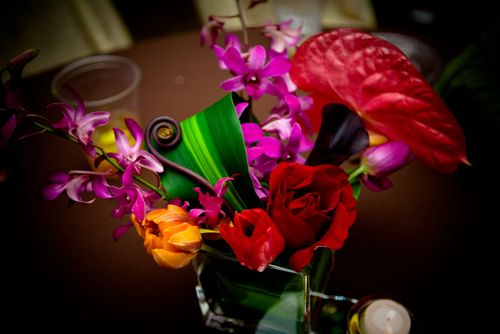 tulips, anthurium, and leves