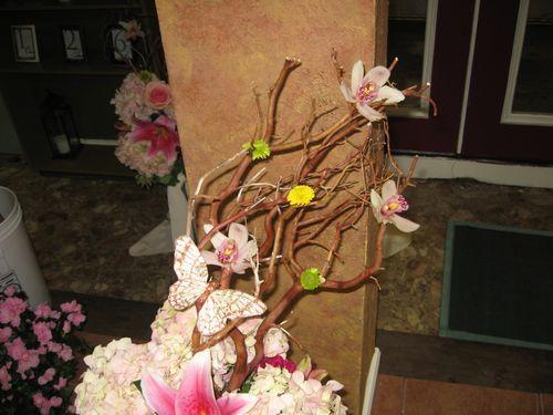 manzanita with flowers