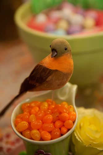 Bird & orange jelly beans